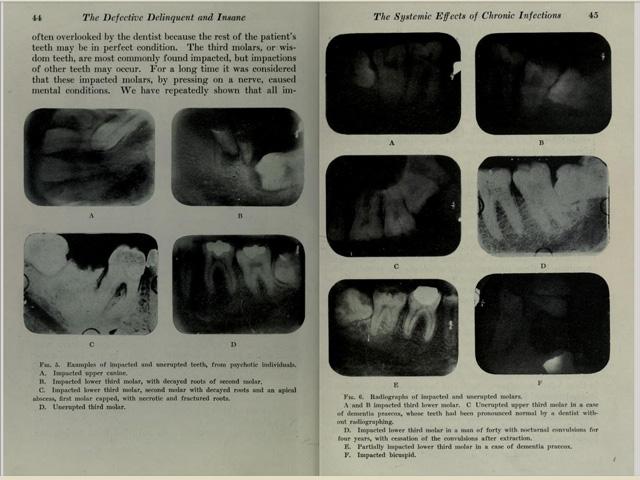 Livro Dr. Cotton 2